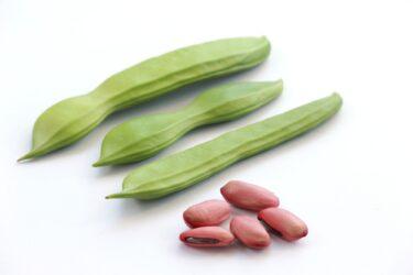 なた豆の面白エピソード!美味しい食べ方とは